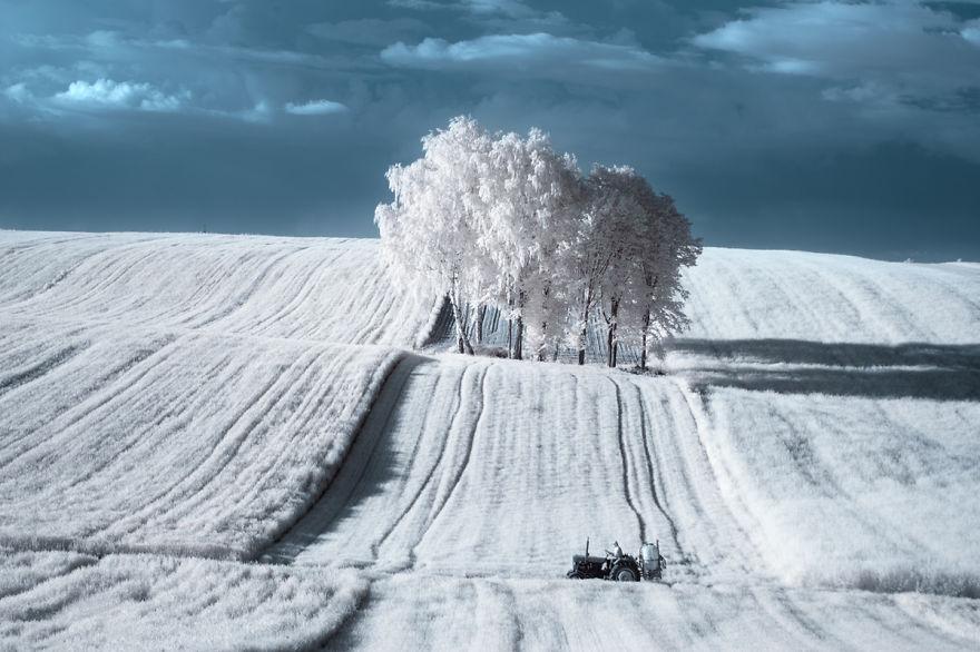 2. Пшемыслав более 20 лет путешествовал и фотографировал природу.