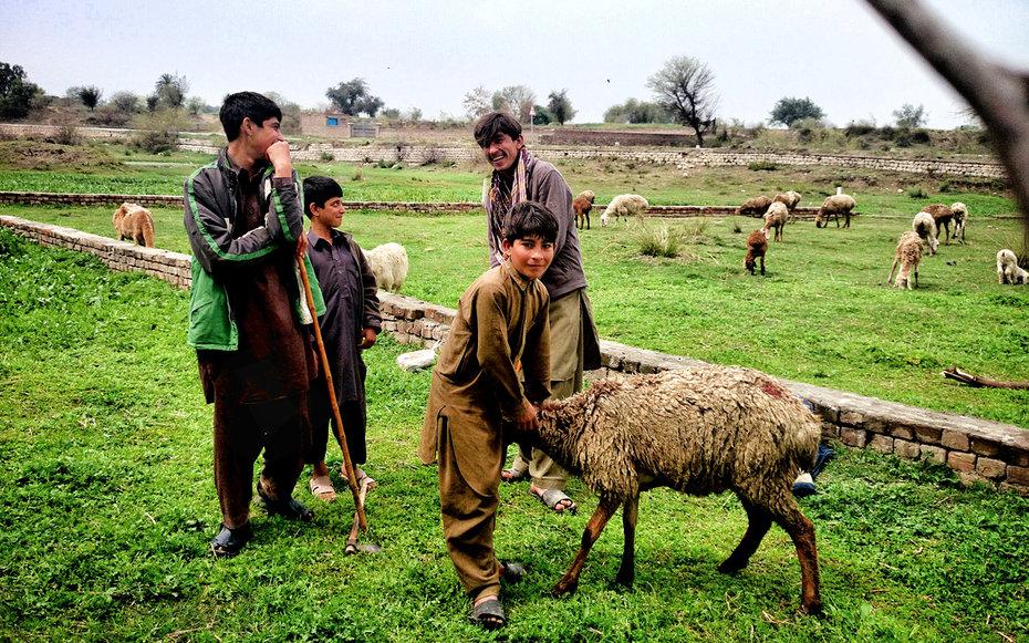 1. Пакистан.
