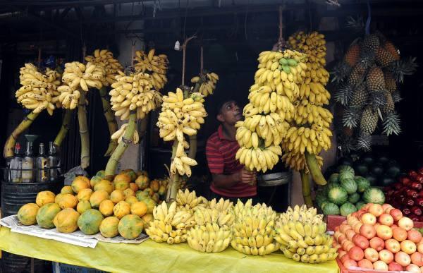 11. 11 бананов в Гондурасе.