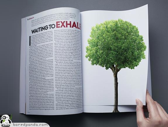 1. Социальная реклама против вырубки лесов.