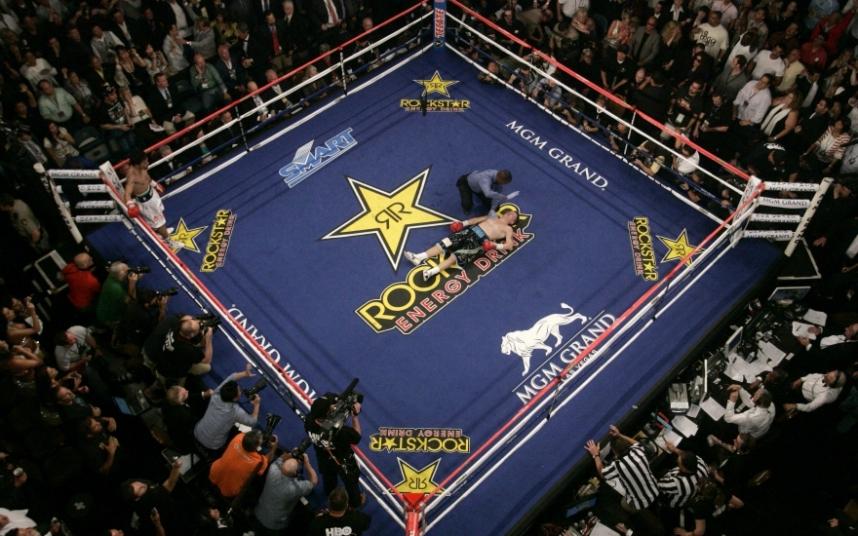 5. MGM Гранд Гарден Арена, Лас - Вегас, США.