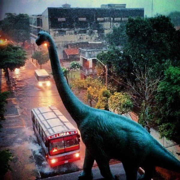 1. Все началось с фигурки брахиозавра, которую фотограф купил на блошином рынке в Ла-Пас, Боливия. Он начал путешествовать по Южной Африке и фотографировать игрушечного динозаврика на фоне окружающей среды.