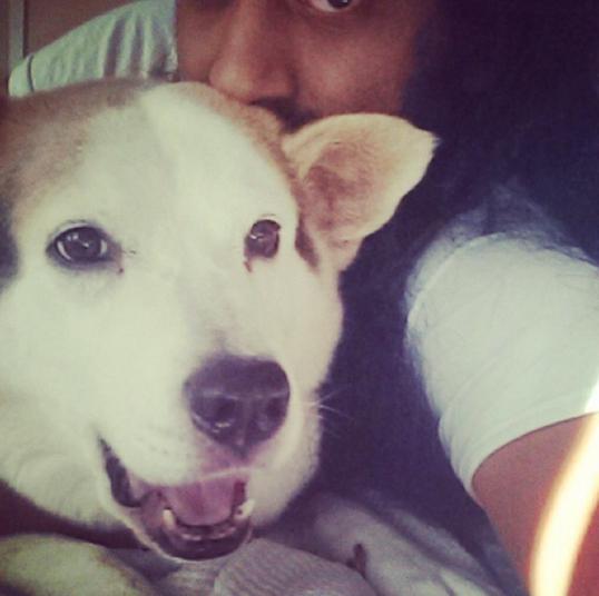 8. Я и моя собака (кошка, кролик, хомячок). Нужное подчеркнуть.