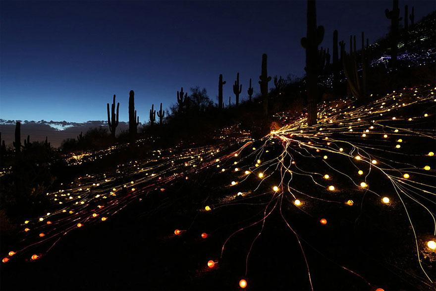 9. Светодиоды горят всю ночь, благодаря накопленной днем солнечной энергии.