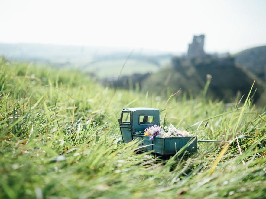 32. Доставка цветов к замку Корф (Великобритания).