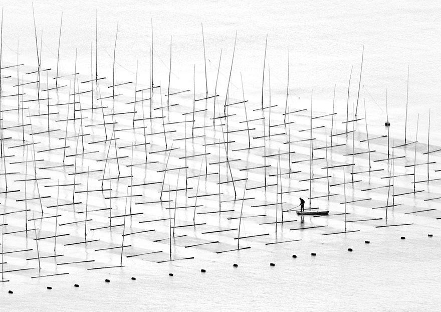 11. «Фермер в воде», Китай.