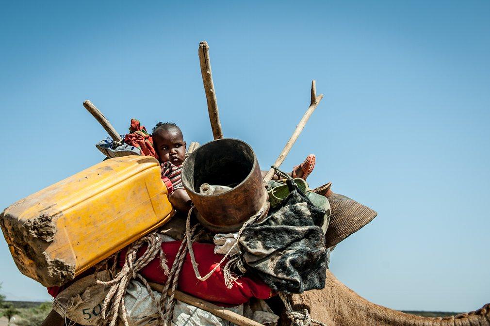 7. Фотограф Джонатан Фонтейн. На фото ребенок на верблюде, который вместе со своей семьей перемещает свой лагерь ближе к реке, где еще осталась вода. Эфиопия переживает самую сильную засуху за последние 50 лет.