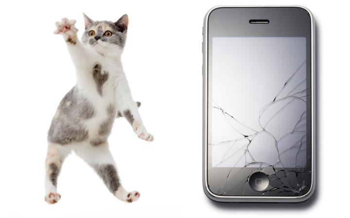 7. Разбитый экран iPhone – проблема довольно частая. Можете убедиться в этом сами, посмотрев на обилие услуг по замене экранов и стекол, ну например как здесь http://iya-yai.kiev.ua/iphone/zamena-stekla. Однако Apple хотела полностью избавить пользователей от проблемы, создав вращающийся iPhone, который, подобно кошке приземляющейся на лапы, приземлялся бы экраном вверх.