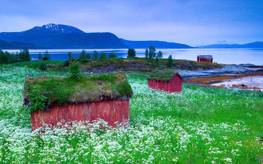 16. Норвегия.