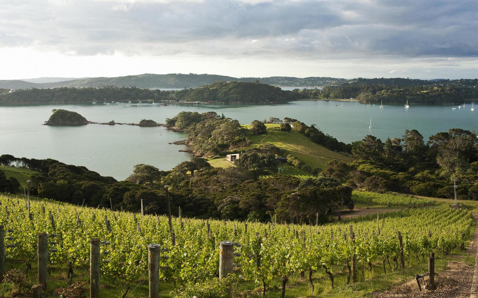 7. Вайхеке, Новая Зеландия.