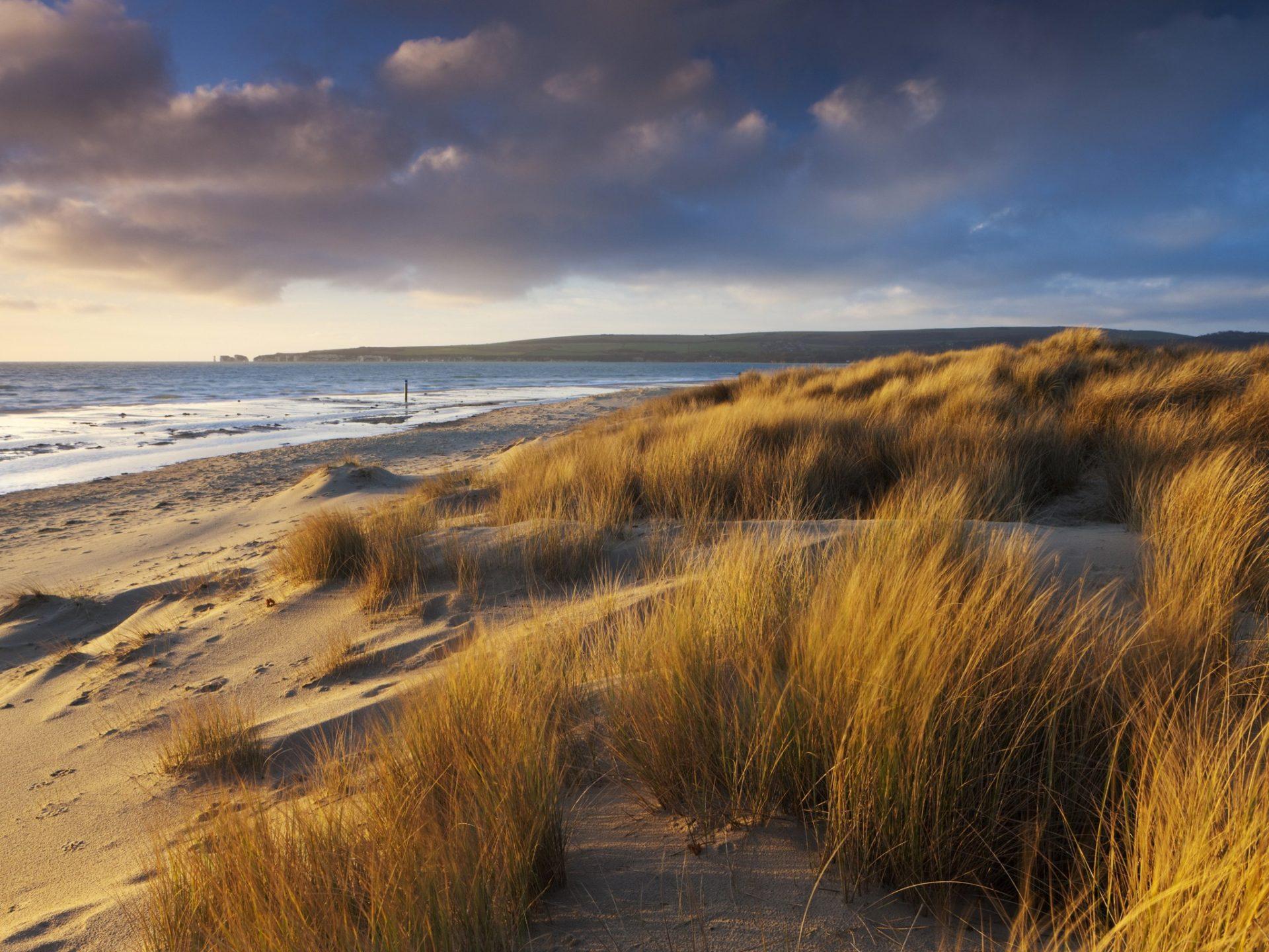 10. Пляж Студленд, графство Дорсет, Великобритания.
