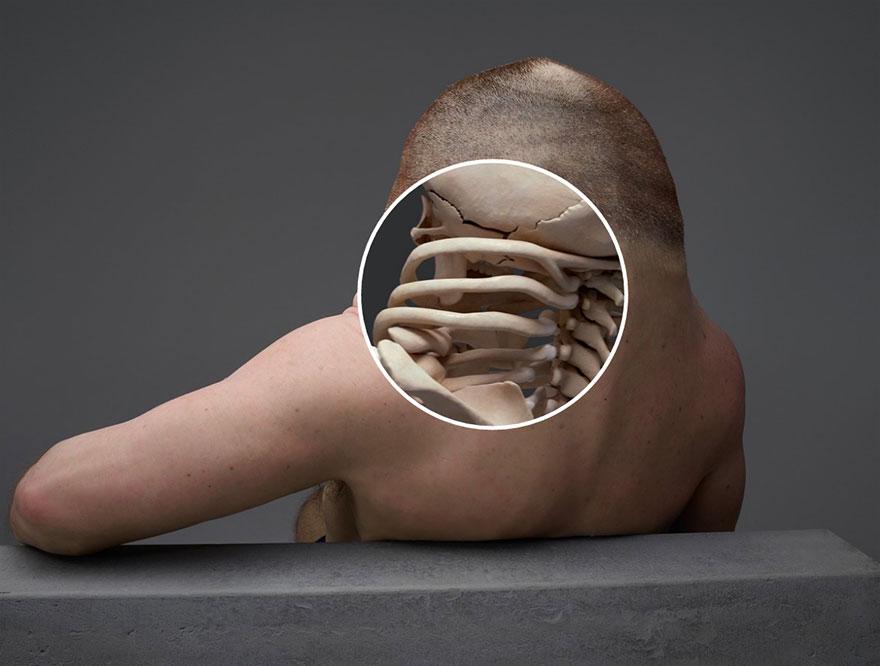 11. Шея Грэма имеет брекет-подобную структуру, которая защищает от травм.