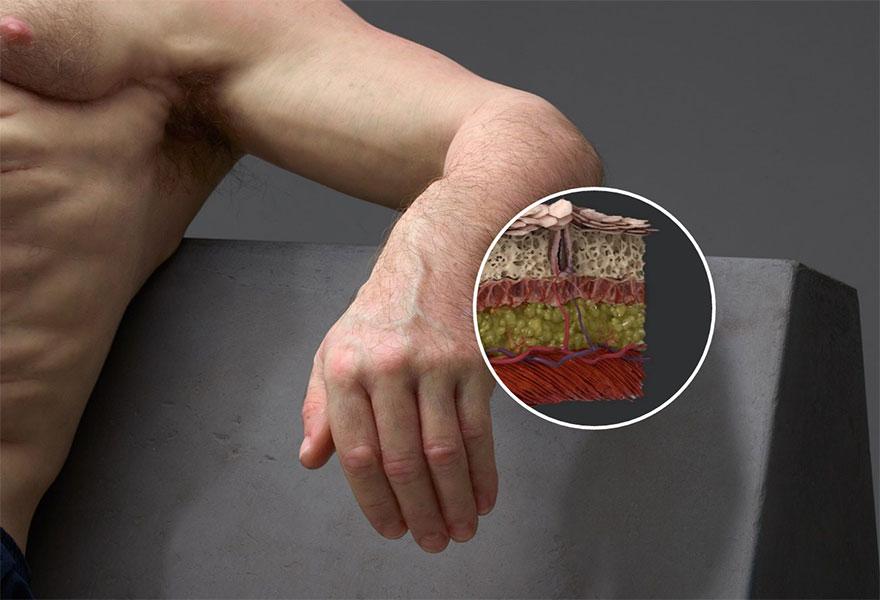 12. Кожа Грэма толще и прочнее нашей. Это уменьшит получение не только ссадин, но и серьезных повреждений кожных покровов.