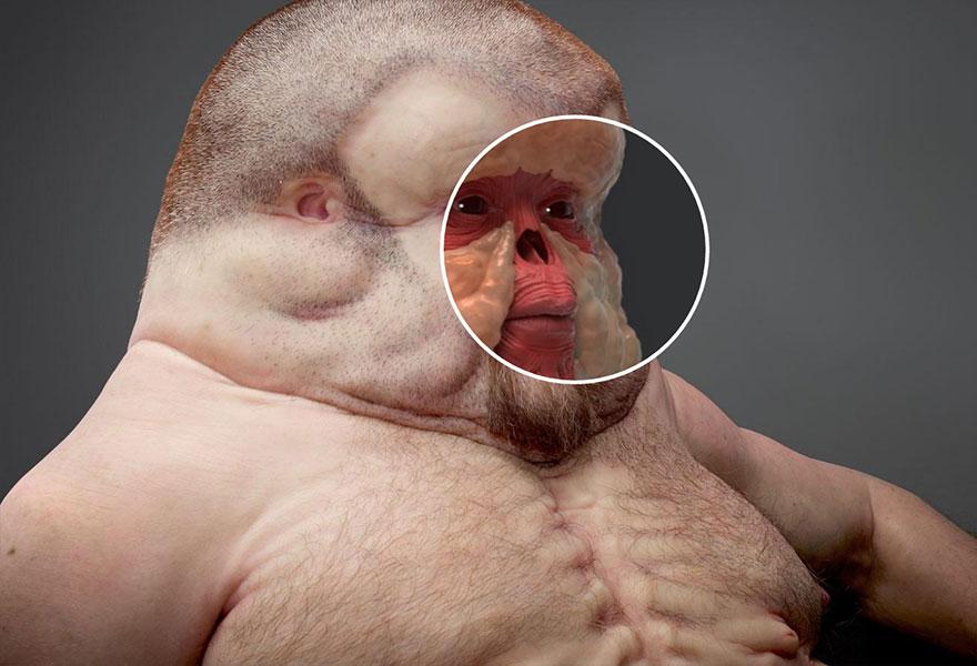 7. Грэм имеет довольно плоское лицо и много жировой ткани, чтобы поглотить энергию удара.