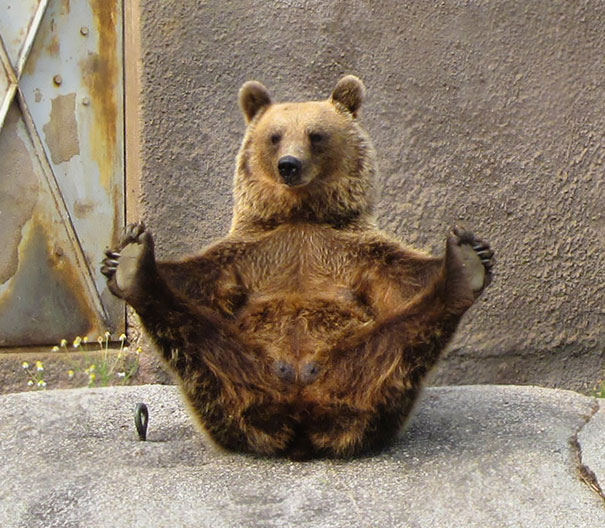 2. Медвежья йога.
