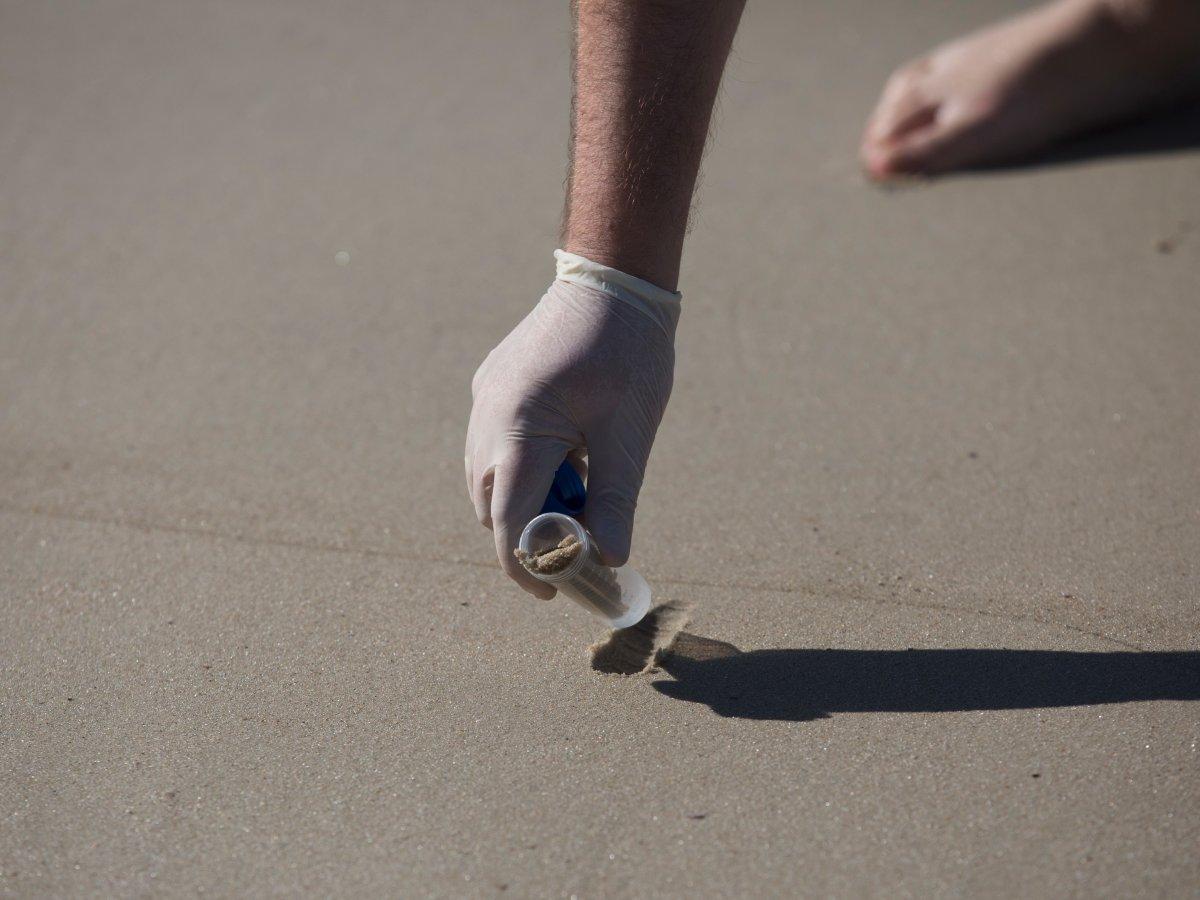 10. Забор воды из из Родриго-де-Фрейтас содержал 248 миллионов аденовирусов на литр. Напомним, что в США это считается значительным превышением нормы. На фото доктор Родриго Стаггемейер собирает песок с пляжа Копакабана для исследования.