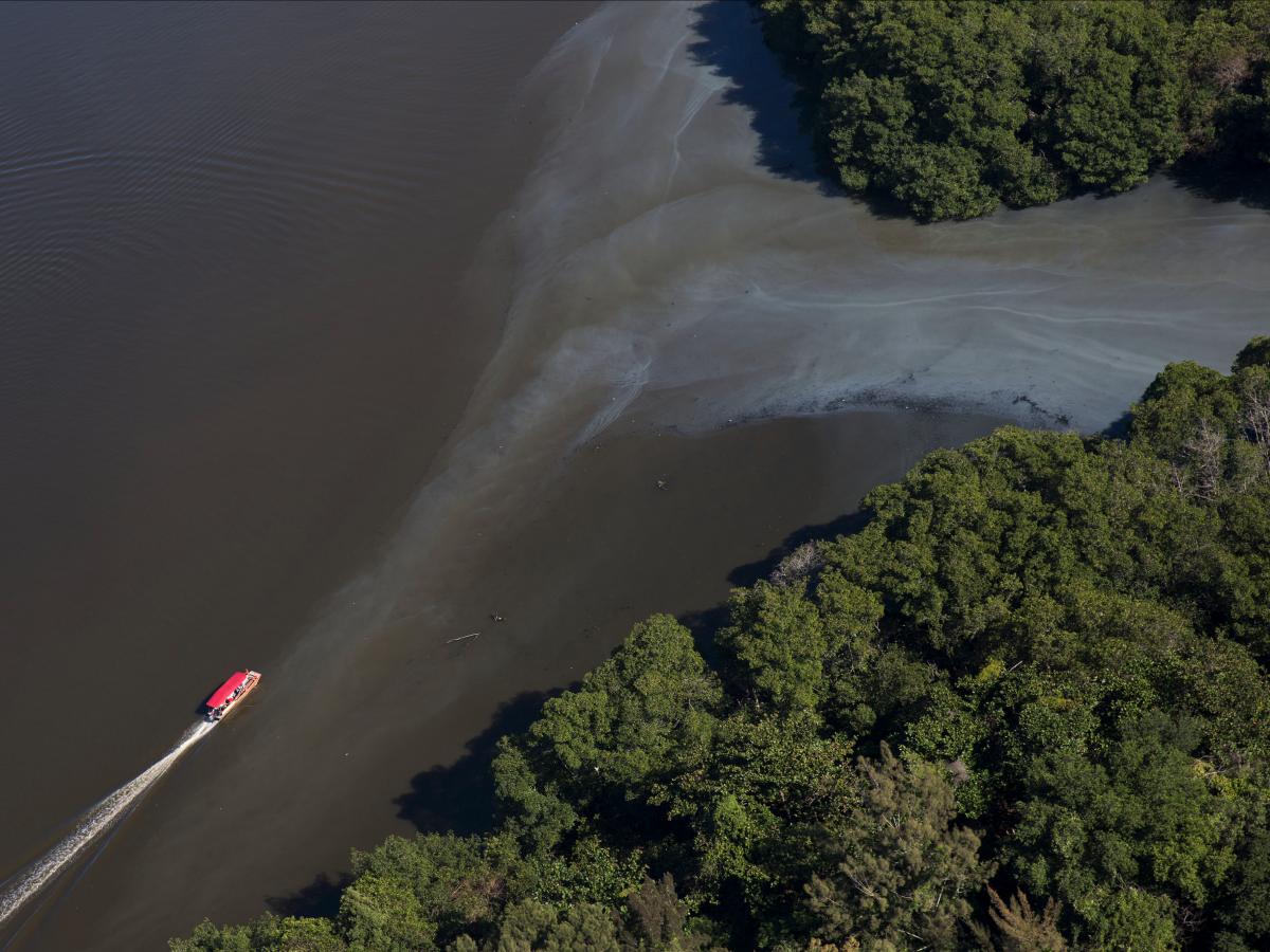 4. Сточные воды можно видеть повсюду. Например на фото видно как сточные воды вливаются в каналы вблизи Олимпийского парка.