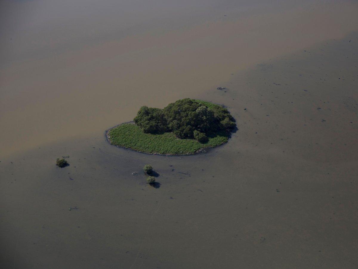 6. Отходов сбрасывается столько, что можно при отливе можно разглядеть токсичный шлам возле островков. На фото лагуна возле Олимпийского парка.