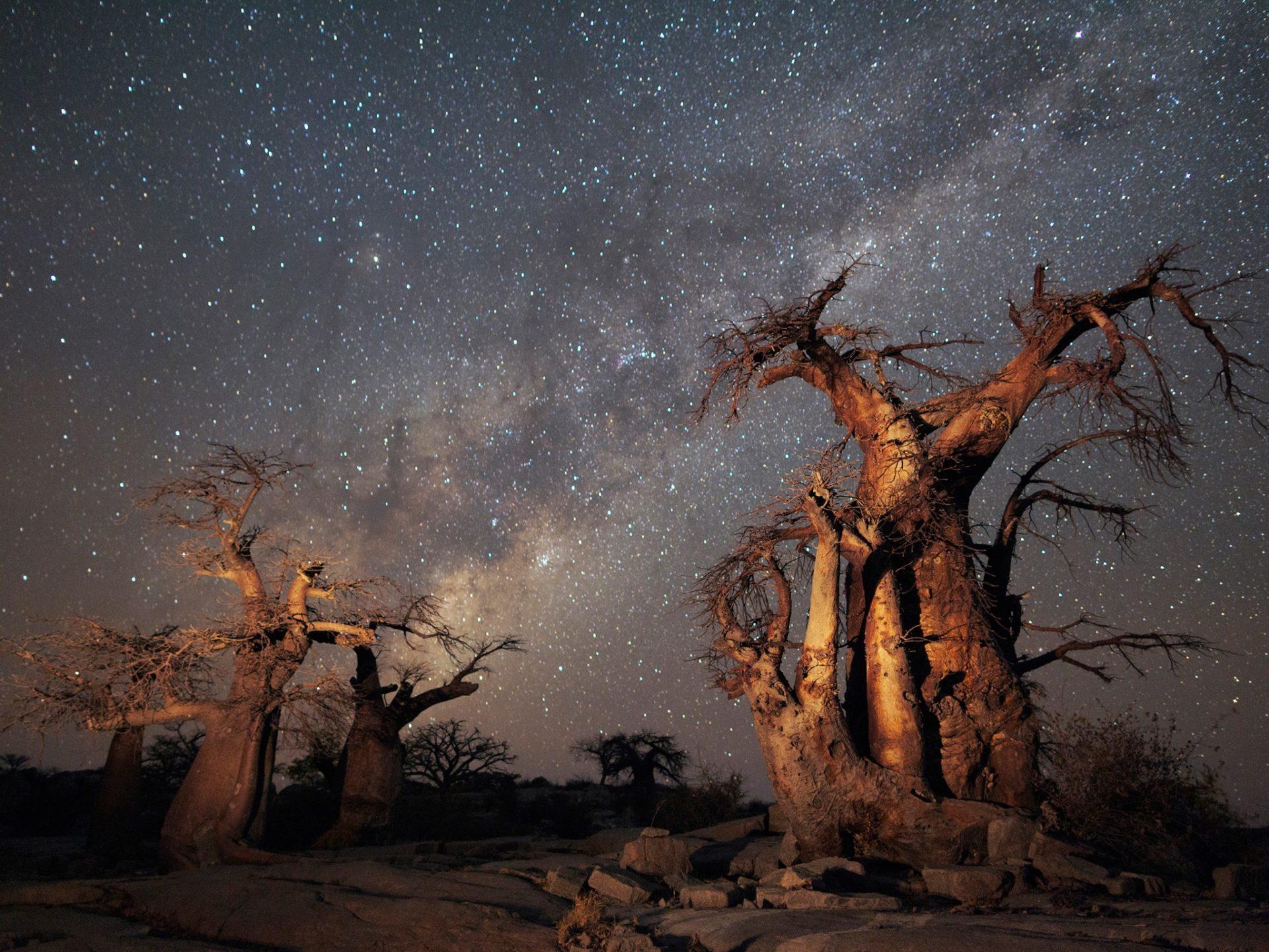 3. Национальный парк Макгадикгади, Ботсвана.