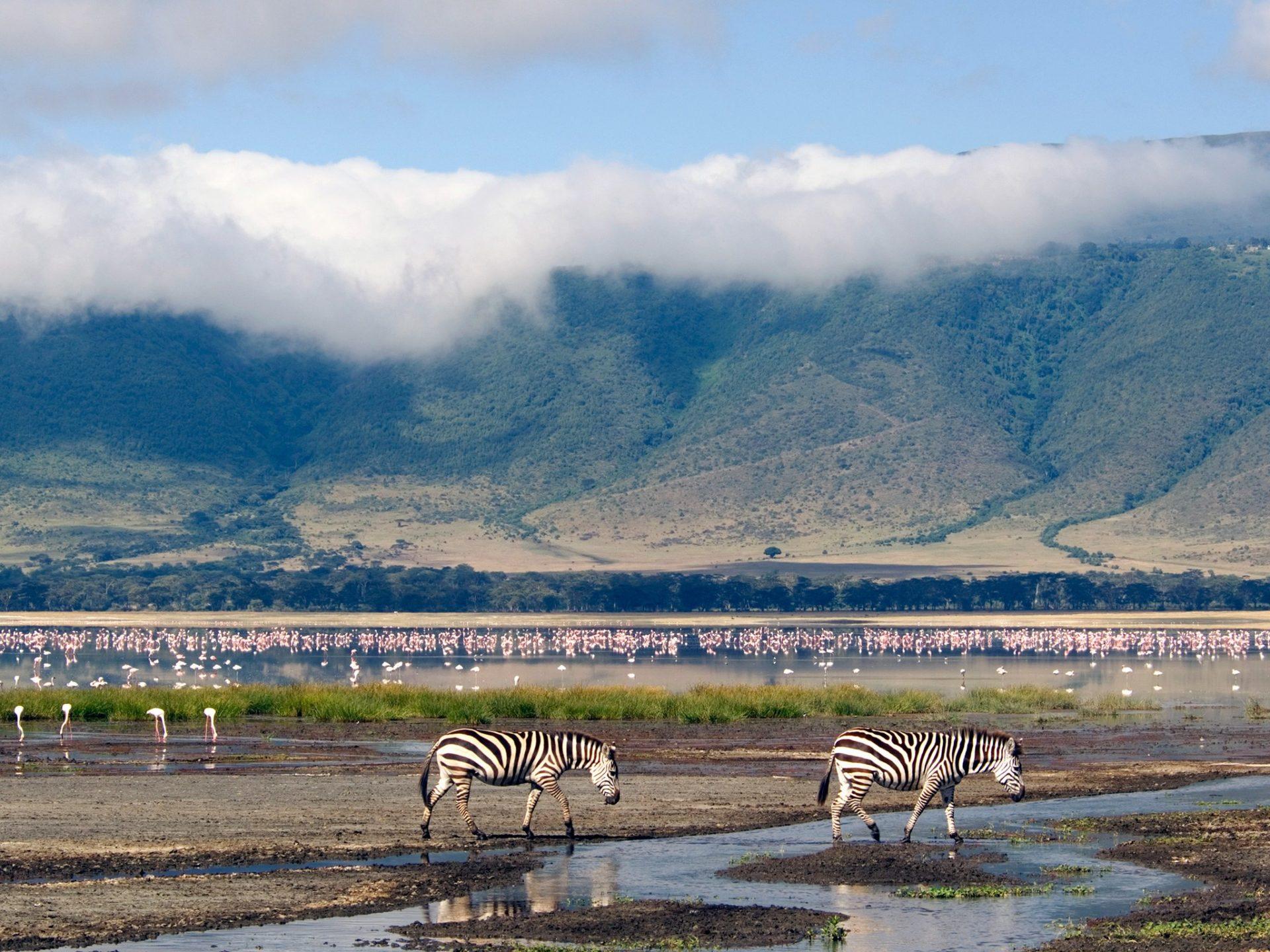 9. Кратер Нгоронгоро, Танзания.