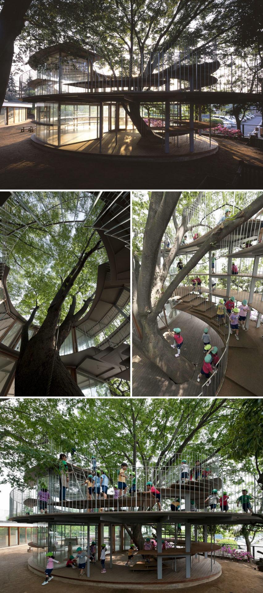 1. Детский сад, построенный вокруг дерева.
