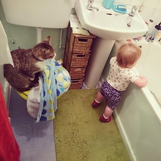 2. Кошка научит ребенка гигиене.