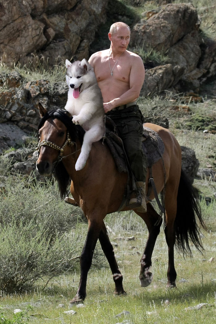 7. Путин