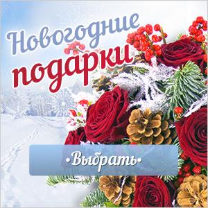 купить подарки на Новый год, интернет-магазин