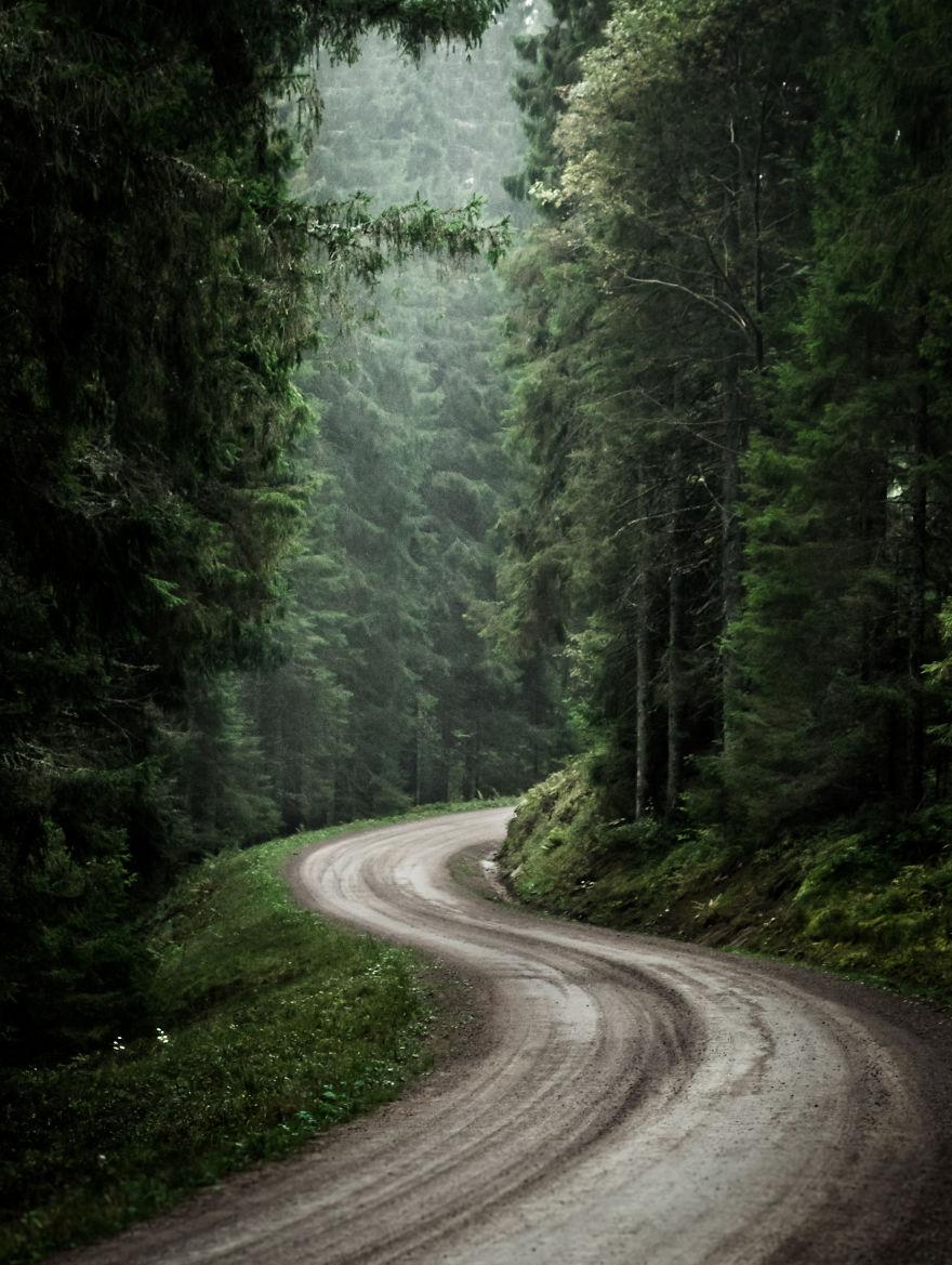 14. Извилистая дорога.