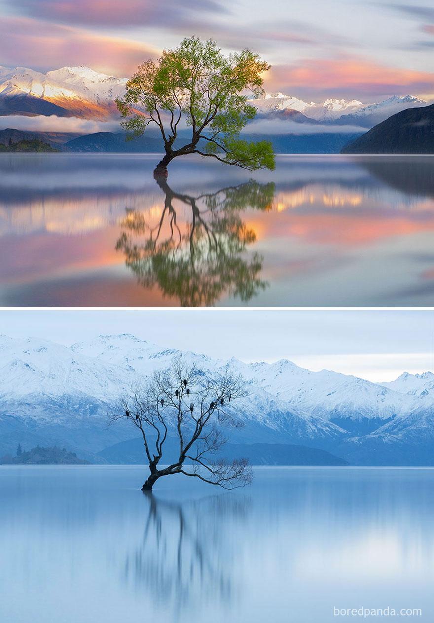 5. Озеро Ванака, Новая Зеландия.