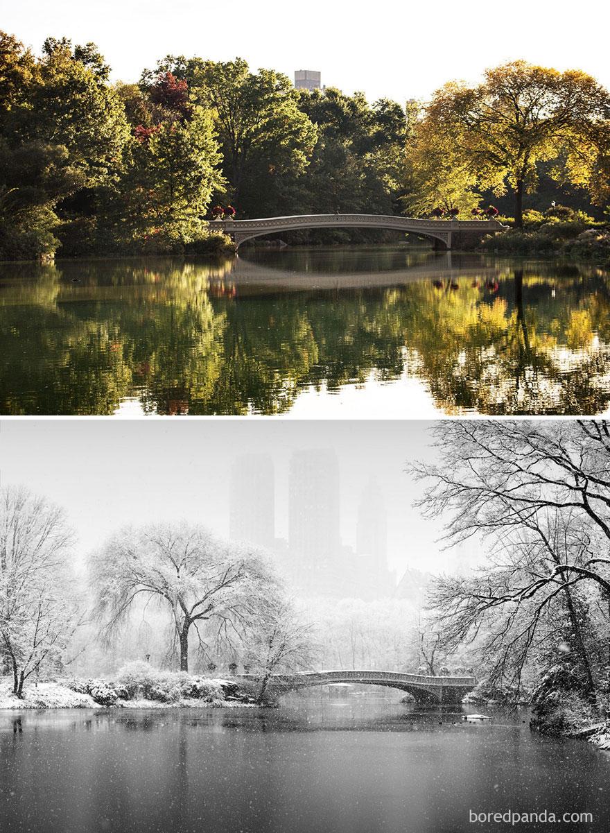 9.  Центральный парк, Нью-Йорк, США.