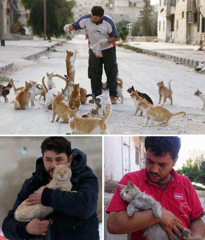 1. Мужчина кормит бездомных кошек в разрушенном войной Алеппо.