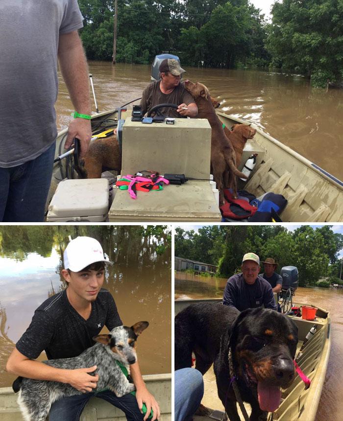 4. Отец и сын спасли 30 собак во время наводнения в Техасе, США.