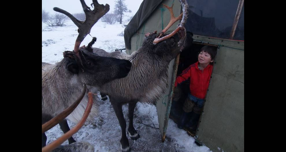 3. Эта фотография была сделана недалеко от села Несь в Ненецком автономном округе на северо-западе России.