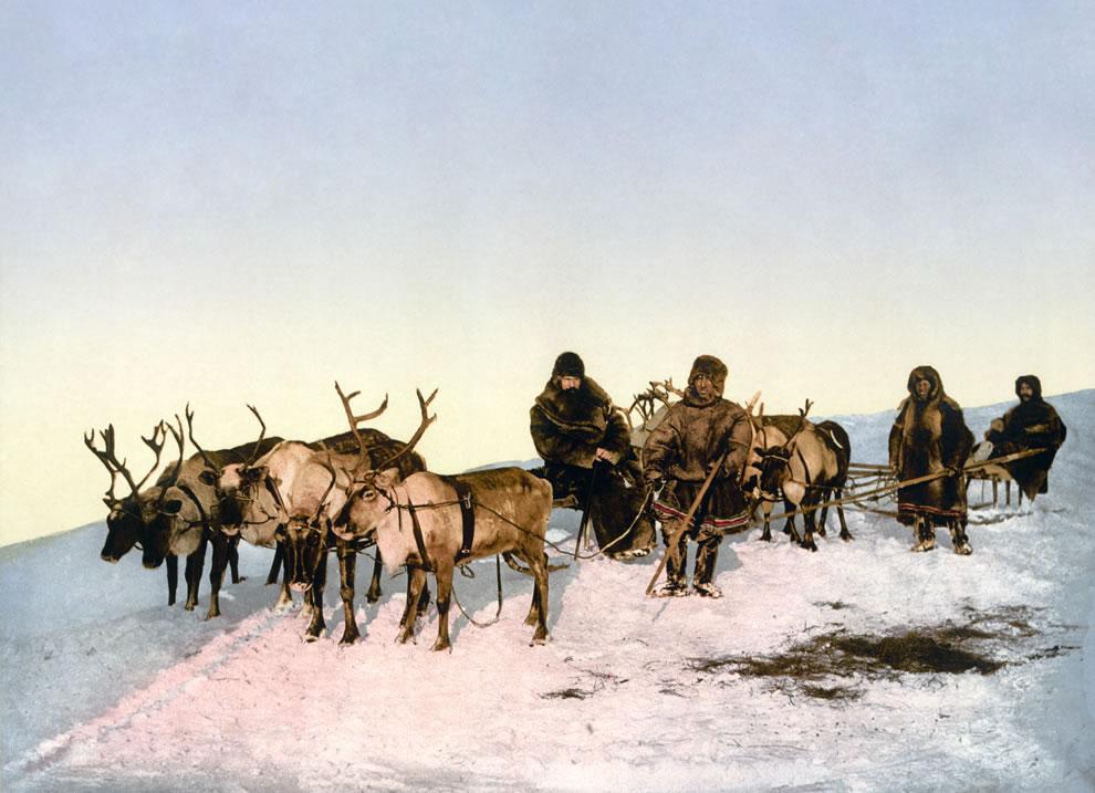 7. Старое фото показывающее путешествие на оленях в Архангельск.