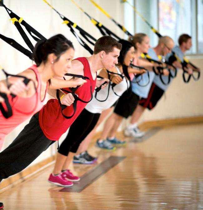 2. Тренировочные петли.