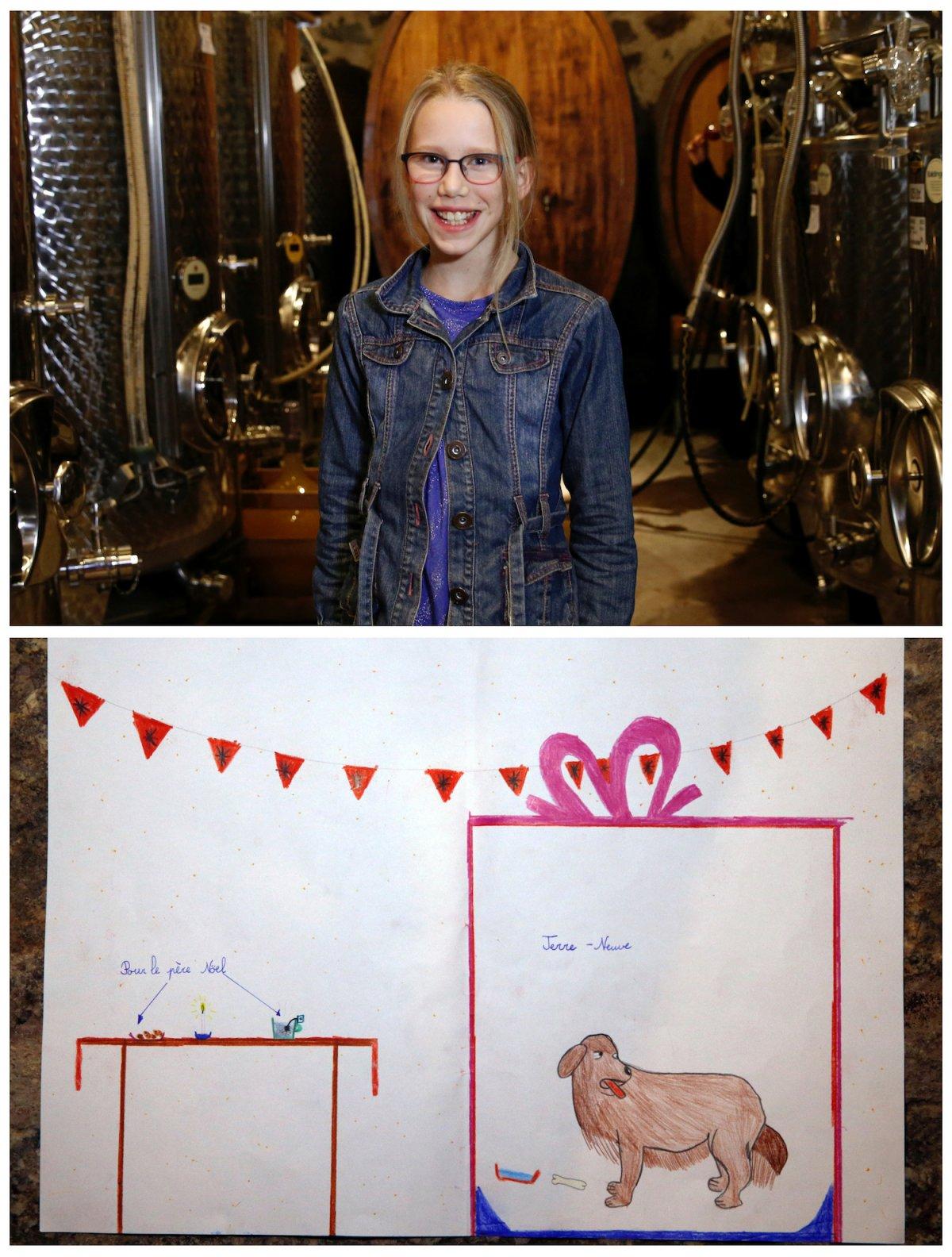 6. 11-летняя Клеманс из Швейцарии мечтает о собаке породы Ньюфаундленд.