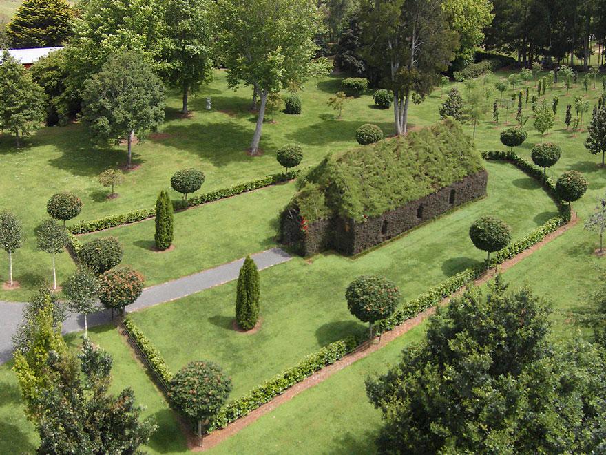 5. Деревья аккуратно выкорчевывали, чтобы вновь посадить их в другое место.