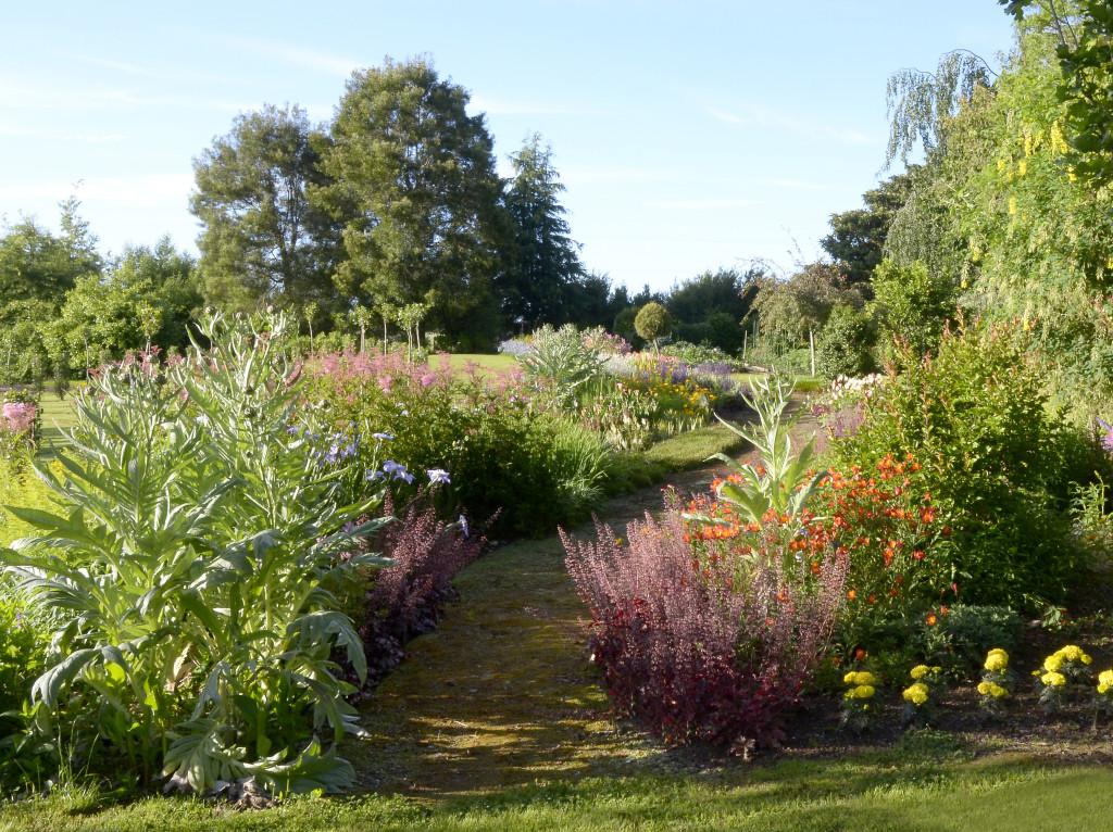 8. Для придания контраста зелени были посажены различные растения. Например тонкосемянник.
