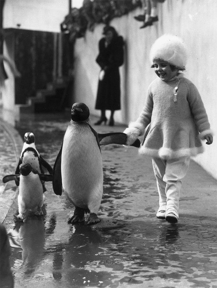 12. Девочка в лондонском зоопарке, 1937.