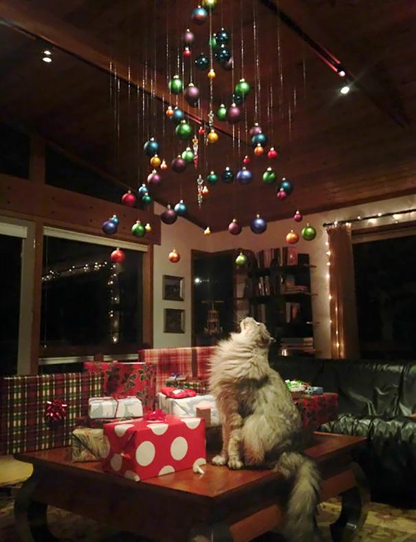 6. Еще одно идеальное украшение дома под Новый год для владельцев кошек.