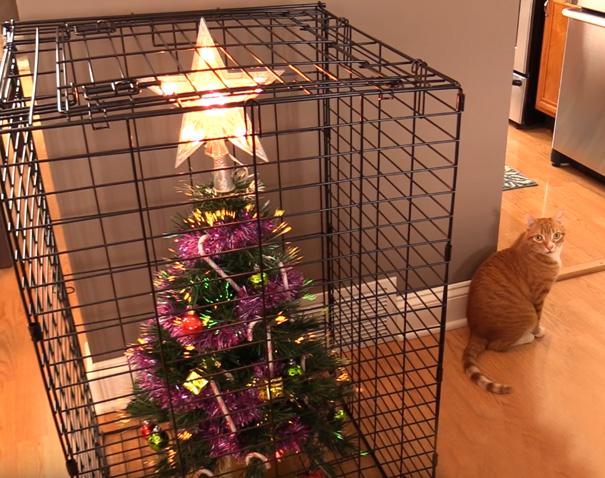 8. Как защитить новогоднюю елку от вашего кота? Садить кота в клетку не очень гуманно, а вот посадить в клетку елку – вполне мудрое решение.