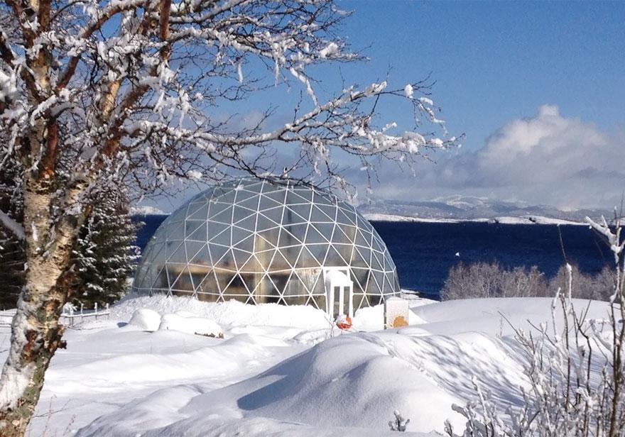 9. Семья Hjertefølger планирует провести семинары, экскурсии и даже концерты в их экологичном доме.