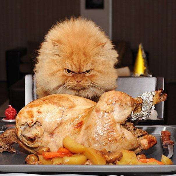 9. Сначала я съем эту курицу, а потом уже всех вас.
