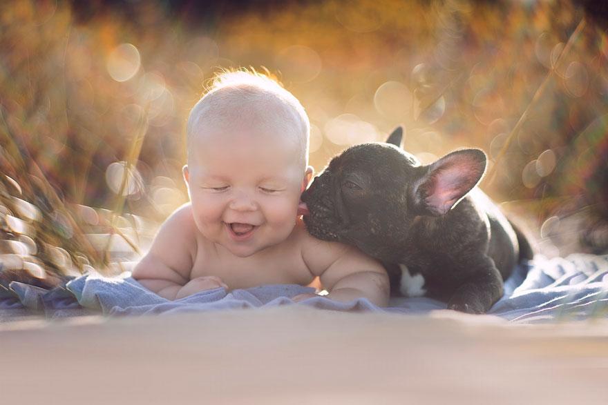 1. «Я посмотрела на дату рождения Фарли (щенок) и просто поняла, что он должен быть с нами», говорит девушка. Поэтому Фарли сразу же взяли к себе в дом и получил в придачу маленького друга.