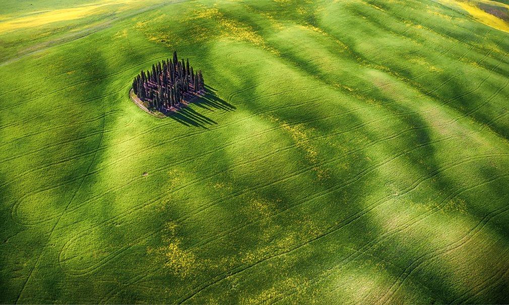 12. Второй приз в любительской категории «Красота» - «Зеленые волны».